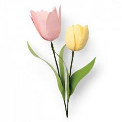 Fustella Tulipano Sizzix Thinlits Die Set 8 pezzi - Tulip 664390